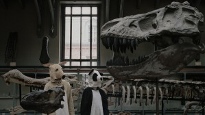 -- 3 types bizarres déguisés en animaux ont pour projet d'enterrer un enfant en forêt... -- Clip de Who Makes Anita Shake, réalisé par Raphaël Pfeiffer, sur lequel j'ai collaboré à l'image.